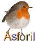 ASFORIL srl logo