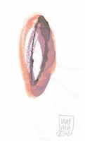 GIUDITTA GAUDIOSO logo