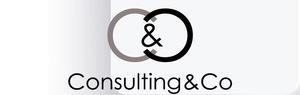 Consulting&Co del dott. modestino Basileo logo