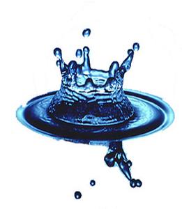 AQUARIUS CONSULTING SRL logo