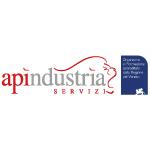 Apindustria Servizi srl logo