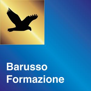 Barusso Formazione enti Locali logo
