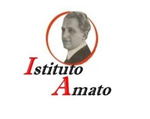 Istituto Amato S.R.L. logo
