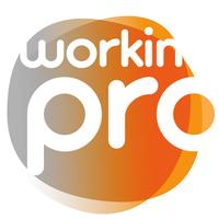 Workin Pro Milano logo